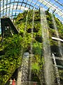 The Fall in the Cloud Forest, Gardens by the Bay, Singapore - 20140513-03.jpg