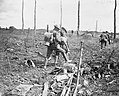 The Hundred Days Offensive, August-november 1918 Q7022.jpg