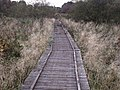 The Shank Boardwalk - geograph.org.uk - 1555761.jpg