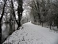 The Wintry Towpath at Woolhampton - geograph.org.uk - 333381.jpg
