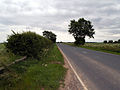 Thornton Road - geograph.org.uk - 188768.jpg