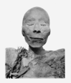 Thutmose I mummy head.png