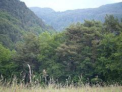 Tirol del Sur (7).JPG