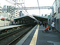 Tokyu-railway-toyoko-line-Tsunashima-station-platform.jpg