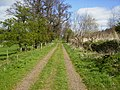 Track which the St.Cuthbert's Way follows near Yetholm - geograph.org.uk - 409948.jpg