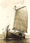 Traditional sailboat old photo.jpg