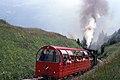 Trains Rothorn de Brienz (Suisse) (5377149991).jpg