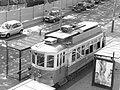Tram (1586411445).jpg