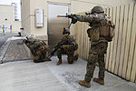 U.S. & Romanian Forces Conduct Bilateral Training 150228-M-XZ244-113.jpg