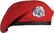 U.S. Air Force Combat Controller red beret.jpg