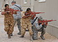 U.S. Airmen assigned to the 379th Expeditionary Security Forces Squadron and military members with a partner nation perform tactical movements during training at an undisclosed location in Southwest Asia 131120-F-EN483-135.jpg