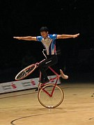 UCI Indoor Cycling World Championships 2006 LvT 31.jpg