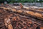 USAID Measuring Impact Conservation Enterprise Retrospective (Guatemala; Rainforest Alliance) (39407080215).jpg
