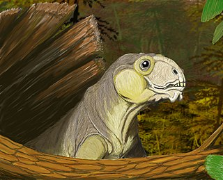 <i>Ulemica</i> genus of mammals (fossil)