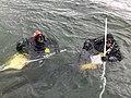 Underwater Research in Glacier Bay (8ec95896-7f82-420d-901c-2b8ff517f011).jpg