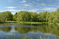 Undla veskijärv (Loobu jõgi).JPG