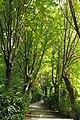 VIEW, ®'s DigiGraf Ð ┼. MADRID PARQUE-JARDÍN del CAMPO del MORO - panoramio (12).jpg
