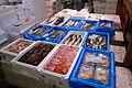 Various Fish (2678941678).jpg