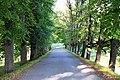 Vecauces pils parks 7.jpg