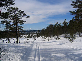 Birkenes Municipality in Aust-Agder, Norway