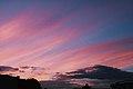 Velvet Skies.jpg