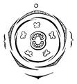 Verbascum flowerdiagram.png