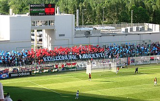MOL Vidi FC - Videoton supporters at the ETO Park, in Győr (2010).