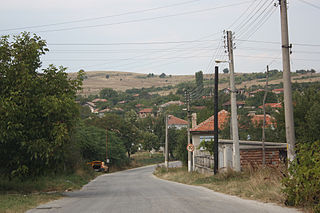 View-of-Dyulevo.jpg