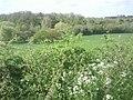 View across Alkerden Farm - geograph.org.uk - 2376446.jpg