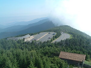 Mount Mitchell State Park - A view from the observation tower.