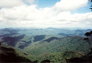 Bellinger River - Bellinger River Valley, as seen from Point Lookout, 1995
