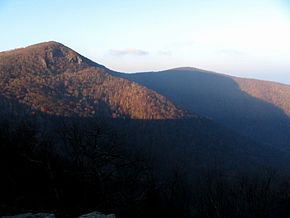 View from Skyline Drive near Hawksbill.jpg