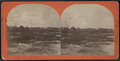 View from the Ocean, by S. R. Morse.png