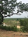 View from the Visitor's Lodge overlooking Mole National Park.jpg
