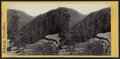 View from the top of the Haines Fall, South Mountain in the distance, by E. & H.T. Anthony (Firm).png