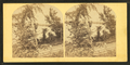 View of Springfield of the pistol factory, from Robert N. Dennis collection of stereoscopic views.png