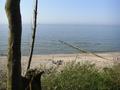 View on rewal beach.png