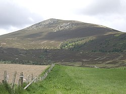 View to Ben Rinnes - geograph.org.uk - 1339405.jpg