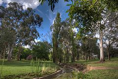 Views of Telopea Park in Canberra IMG 8566 ff StrongDefault.jpg