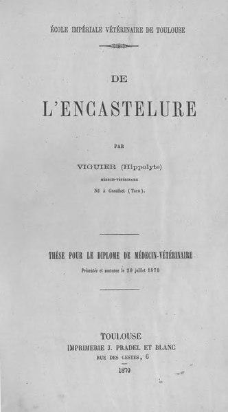 File:Viguier - De l'encastelure.djvu
