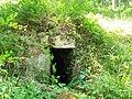 Villeneuve-sur-Verberie (60), fontaine Saint-Barthélémy, parcelle 55 de la forêt d'Halatte.jpg