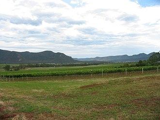 Hunter Valley wine - Vineyards in the Broke Fordwich area