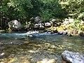 Voidomatis river springs.jpg