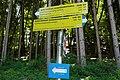 WSUT, Wörthersee Ultra Trail, Südufer, Etappe Klagenfurt - Velden, Kärnten.jpg