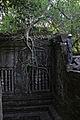 Wall, tree, & worker. (3745834039).jpg
