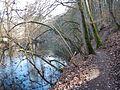 Wanderweg an der Enz - panoramio (1).jpg
