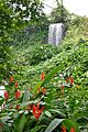 Waterfall in the Eden Project 1.jpg