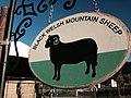 Where All The Sheep Are Black (14967001348).jpg