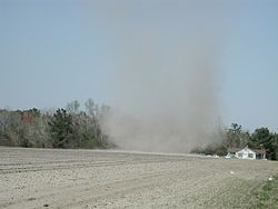 Dust devil in Johnsonville, South Carolina.