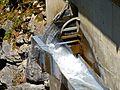 WikiProjekt Landstreicher Trettachtal 08.jpg